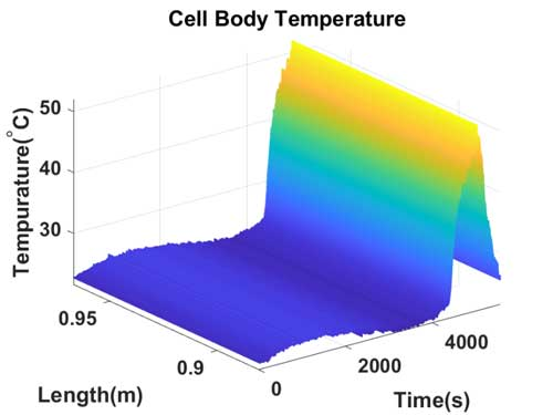 Cell Body Temperature